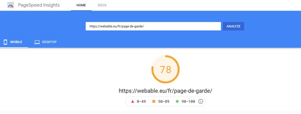 Google Pagespeed Insight - Website Audit